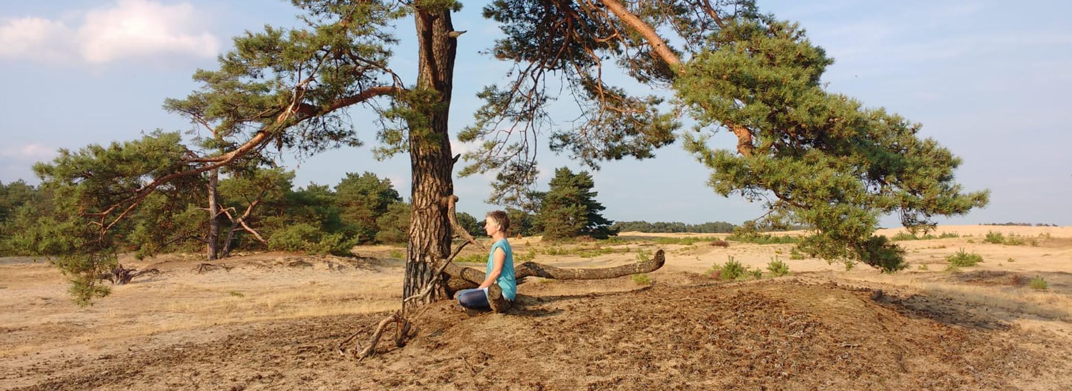 Meditation unter Baum